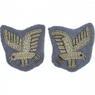 AAC SNCO Collar Badge