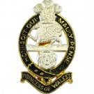 Princess of Wales Royal Regiment Cap Badge, No1 Dress, Screw & Nut