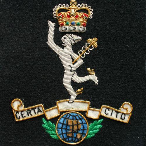 R.SIGS Wire Blazer Badge E11R (N.P)