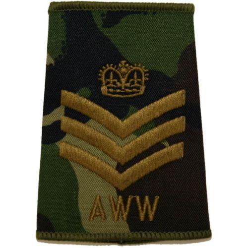 AWW DPM Slides (S/Sgt)