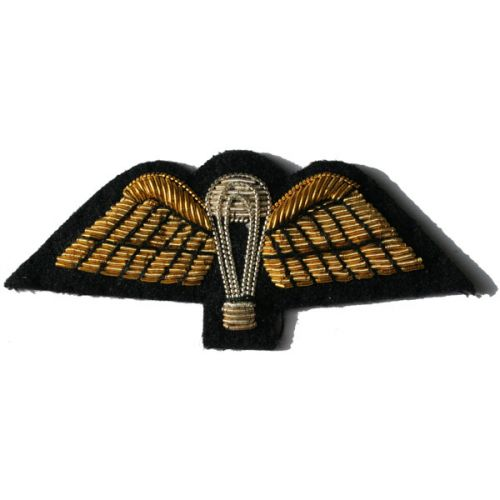 PARA Wings Gold On Navy