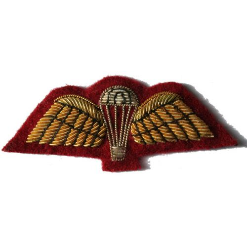 PARA Wings On Medical Cherry