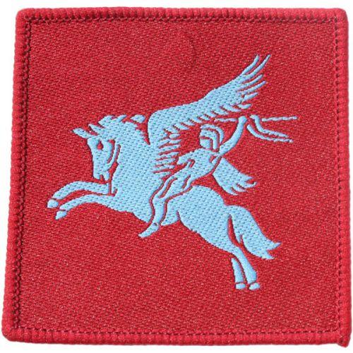 Airborne DZ Flash Badge
