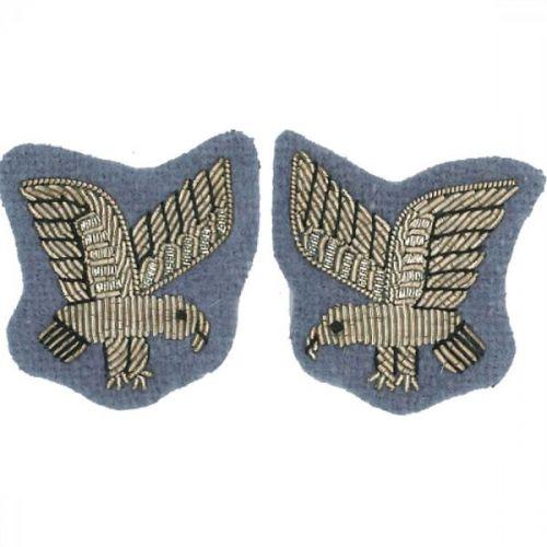 AAC SNCO Eagle Badge