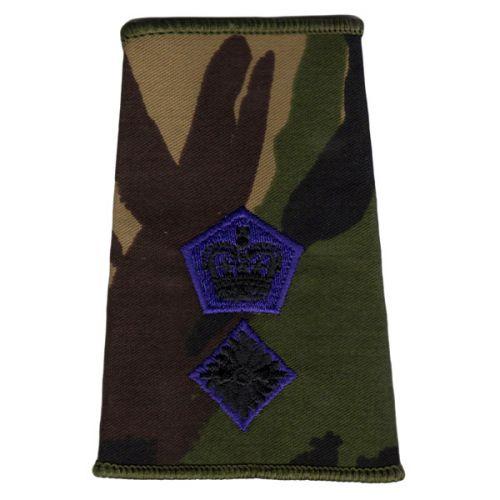 RAChD Rank Slides, CS95, (Lt/Col)