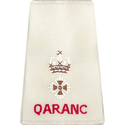 QARANC Rank Slides, Cream, (Lt/Col)