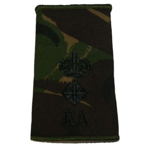RA Rank Slides, CS95, (Lt/Col)
