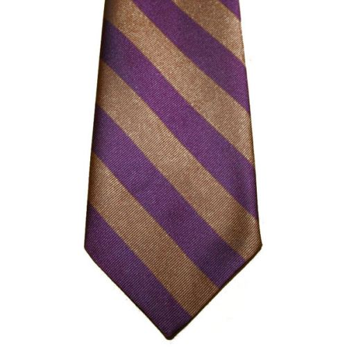 RNF Polyester Striped Tie