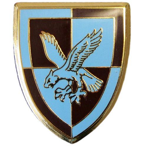 16 Air Assault Lapel Badge